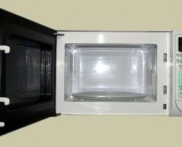 Cómo medir la velocidad de la luz con un microondas y una loncha de queso