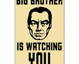 El Gran Hermano te vigila